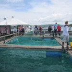 SEAWEED Project Study Tour (11)