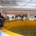 SEAWEED Project Study Tour (4)
